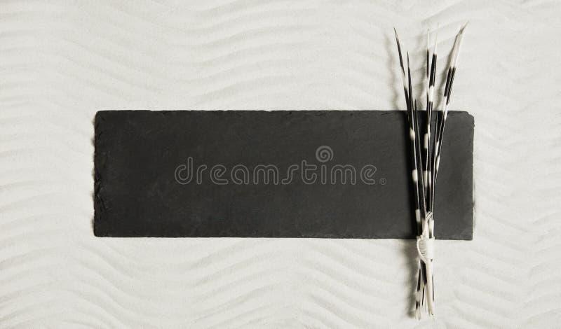 Zwarte raad in het zand met aren van een egel royalty-vrije stock foto's
