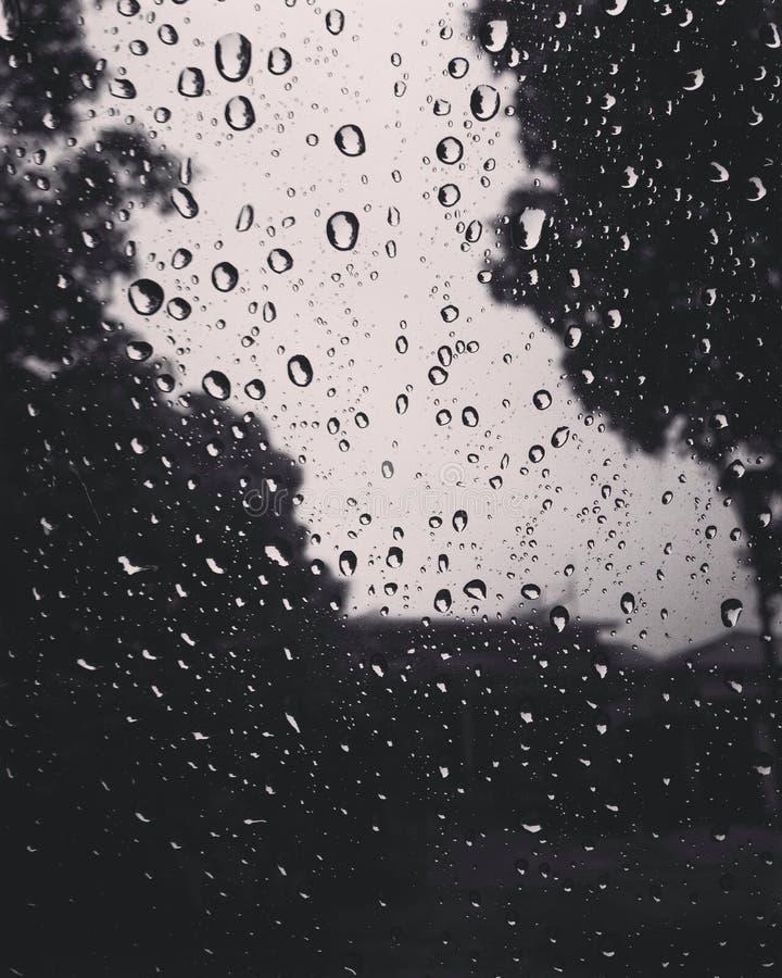 Zwarte regen stock fotografie