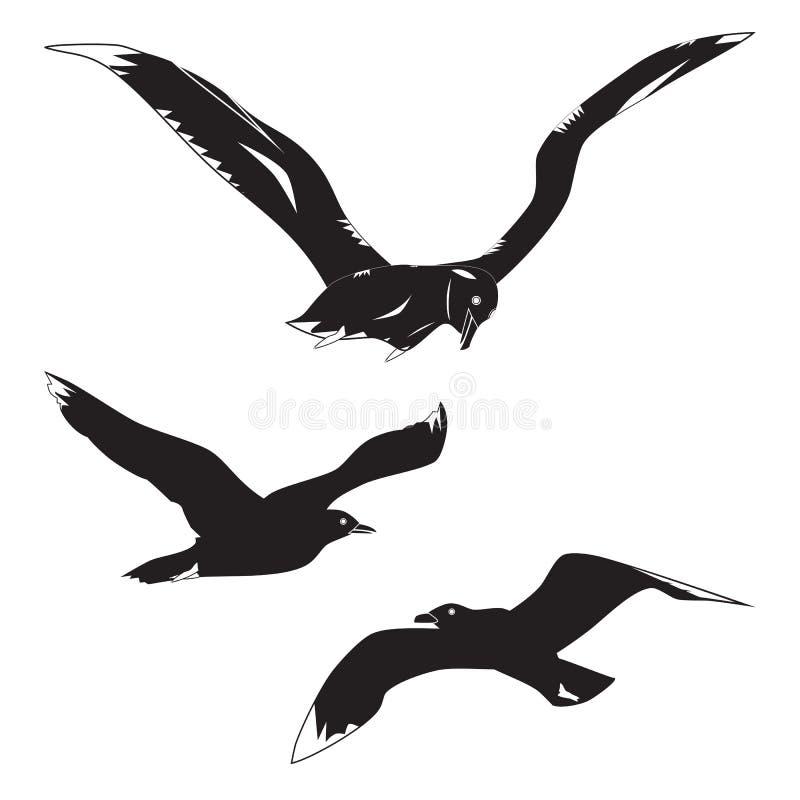 Zwarte silhouetten van meeuwen en albatros stock foto's