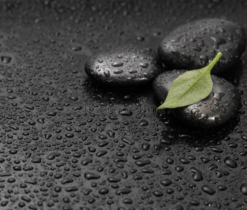 Zwarte steen met blad stock afbeeldingen