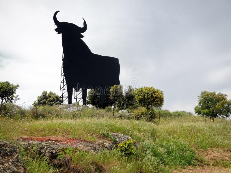 Zwarte Stier in Spanje stock foto's