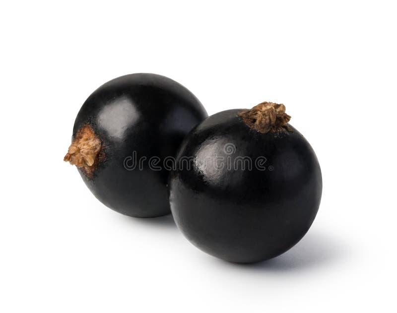 Zwarte stroom royalty-vrije stock fotografie