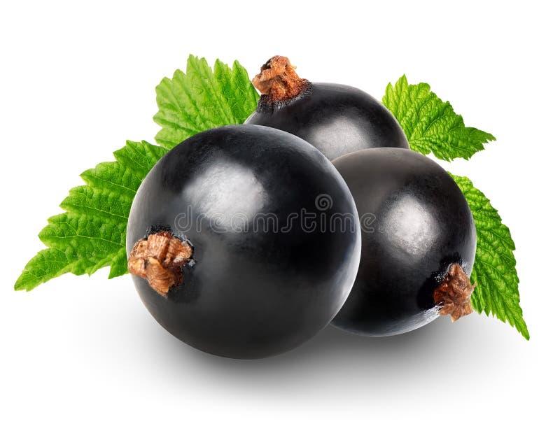 Zwarte stroom royalty-vrije stock afbeelding
