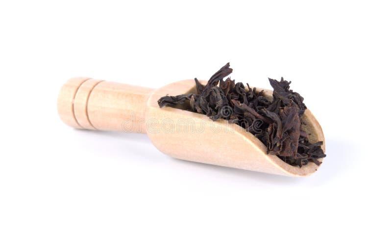 Zwarte thee droge bladeren in houten die lepel op witte achtergrond wordt geïsoleerd royalty-vrije stock afbeelding