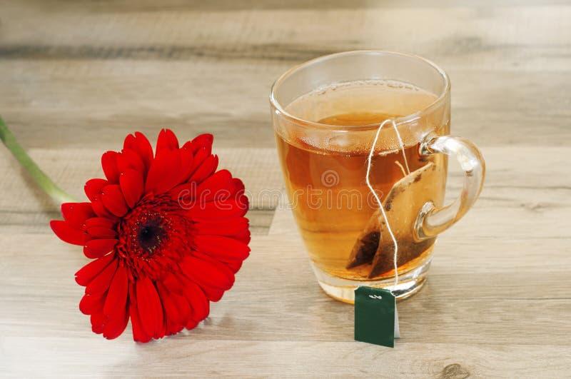 Zwarte thee met mooie bloemgerbera stock fotografie
