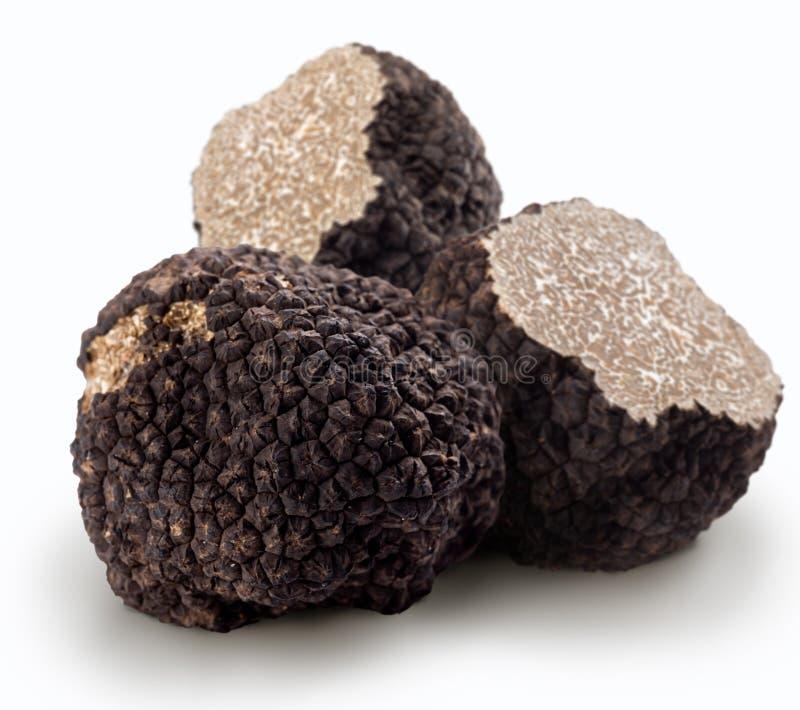 Zwarte truffels stock fotografie