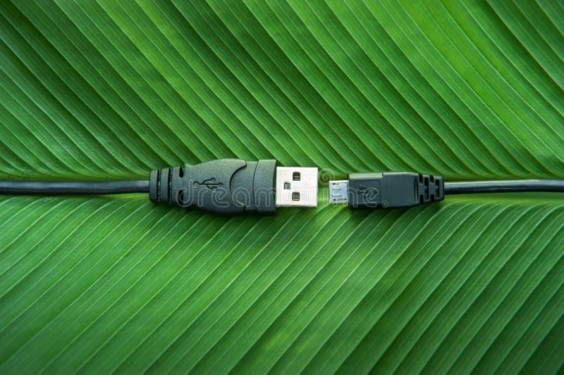 Zwarte USB-kabel op groene bladeren stock fotografie
