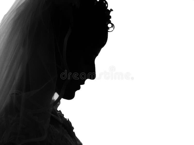 Zwarte weduwe vector illustratie