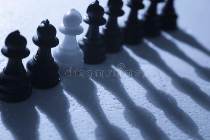 Zwarte of Wit? stock foto's