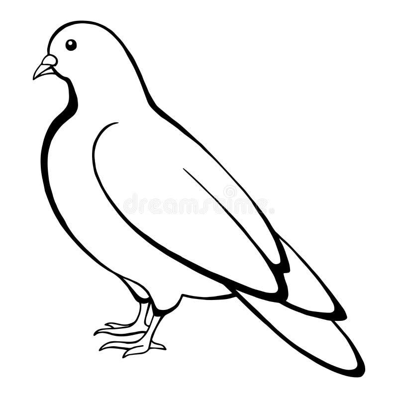 Zwarte witte de schetsillustratie van de duifvogel vector illustratie