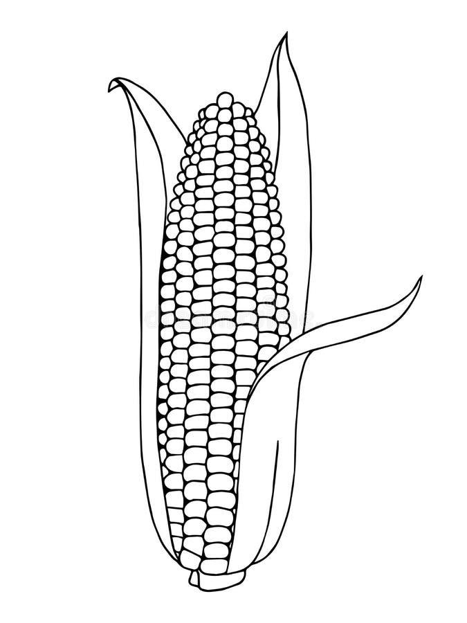 Zwarte witte illustratie van de graan de grafische kunst royalty-vrije illustratie