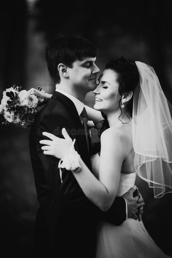Zwarte witte mooie jonge het paartribune van het fotografiehuwelijk op achtergrondbos royalty-vrije stock fotografie