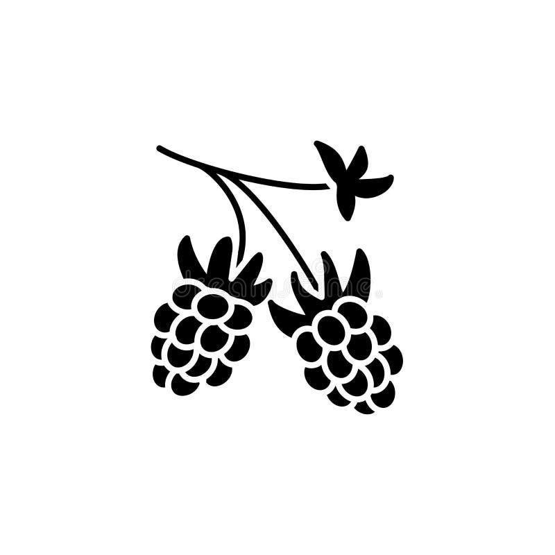Zwarte & witte vectorillustratie van organische framboos Vlakke ico royalty-vrije illustratie