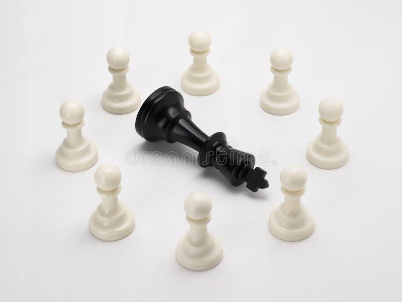 Zwartkopschaken sterven af in een groep van 'schaken voor zakelijk concept' - Eenheid is kracht, strategie, Leider, Macht, Succes stock afbeeldingen