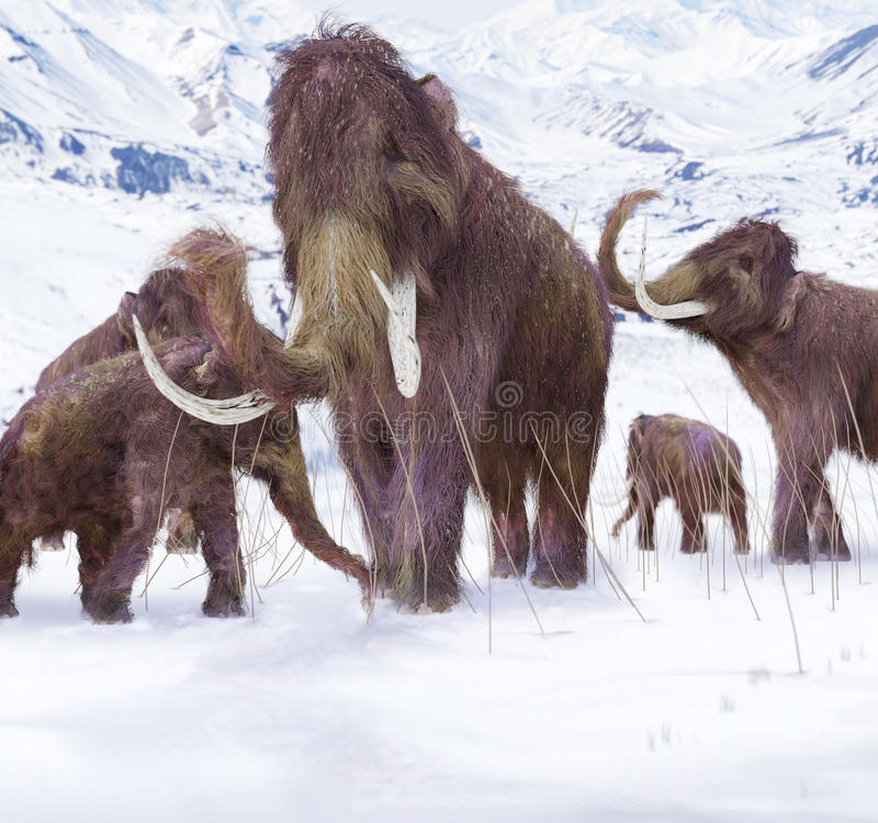 Zwełnionego mamuta rodzina ilustracja wektor