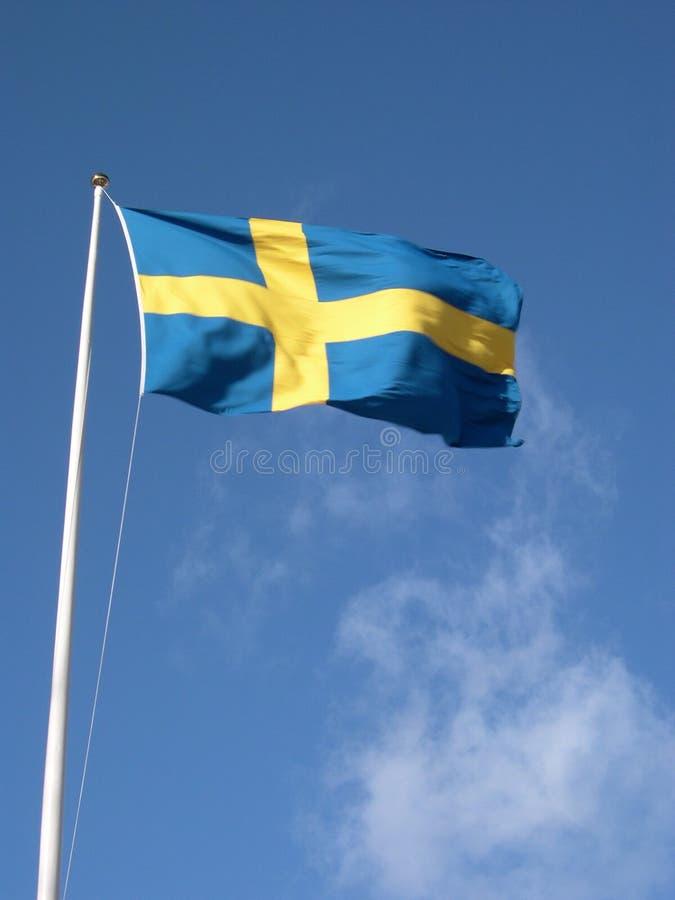 Zweedse Vlag royalty-vrije stock fotografie