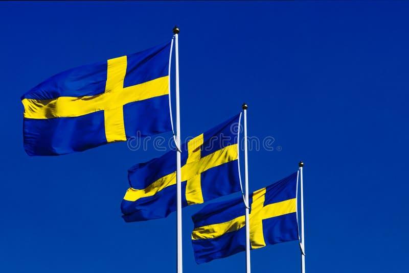 Zweedse Vlaggen in de Wind stock fotografie