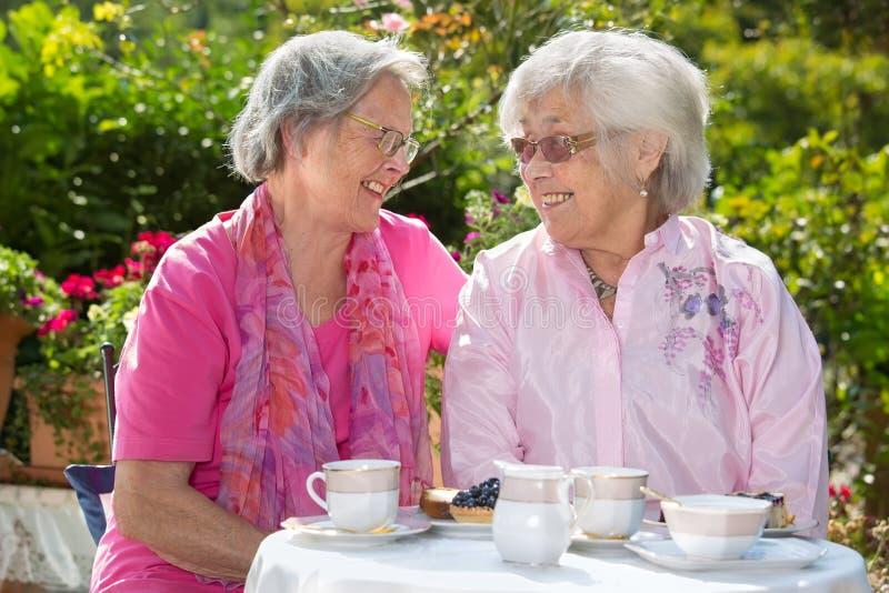 Zwei ältere Frauen, die bei Tisch plaudern stockfotos