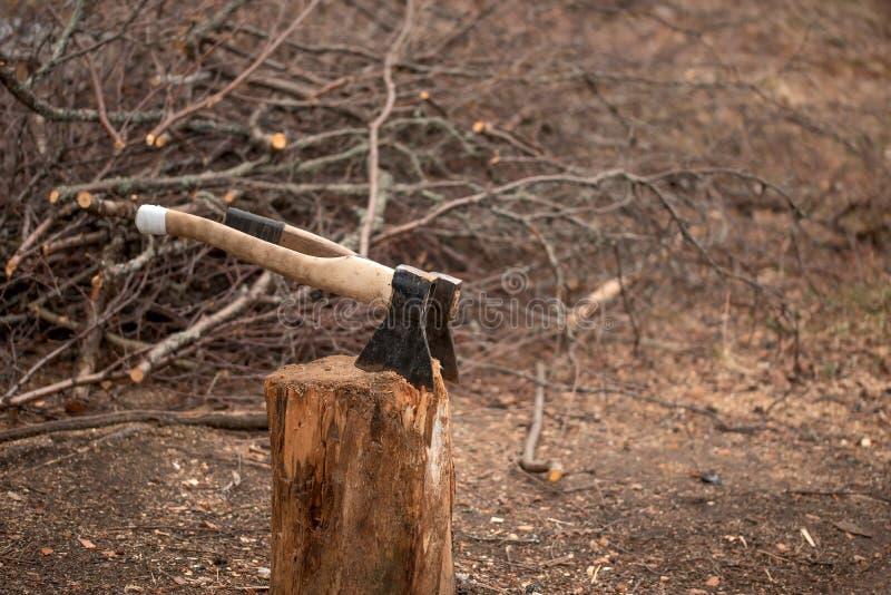 Zwei Äxte in einem Stummel für die Spaltung des Brennholzes im Yard stockfoto