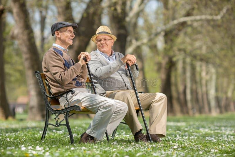 Zwei alte Freunde, die auf einer Holzbank sitzen stockfotografie