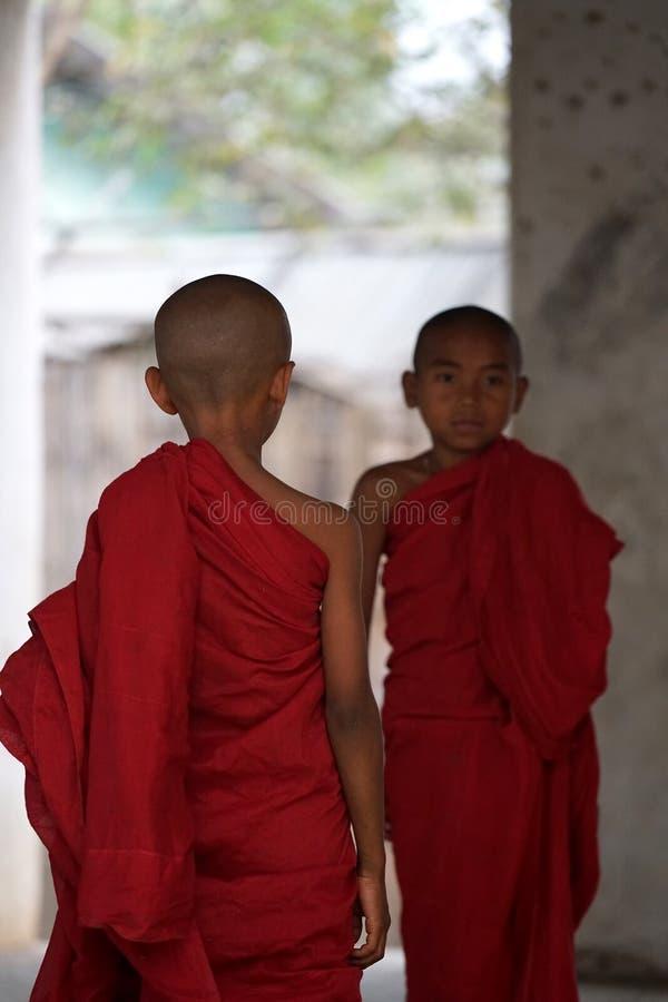 Zwei Anfänger Myanmar lizenzfreie stockfotografie