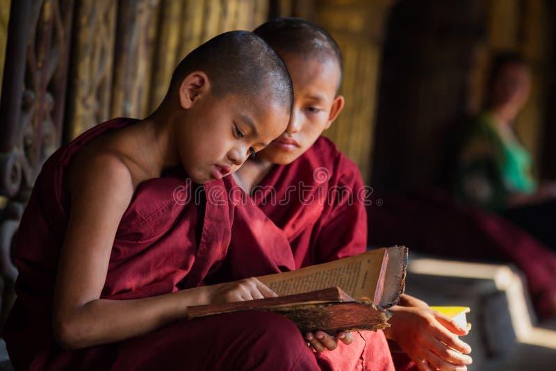 Zwei Anfänger Myanmar, das ein Buch liest lizenzfreie stockbilder