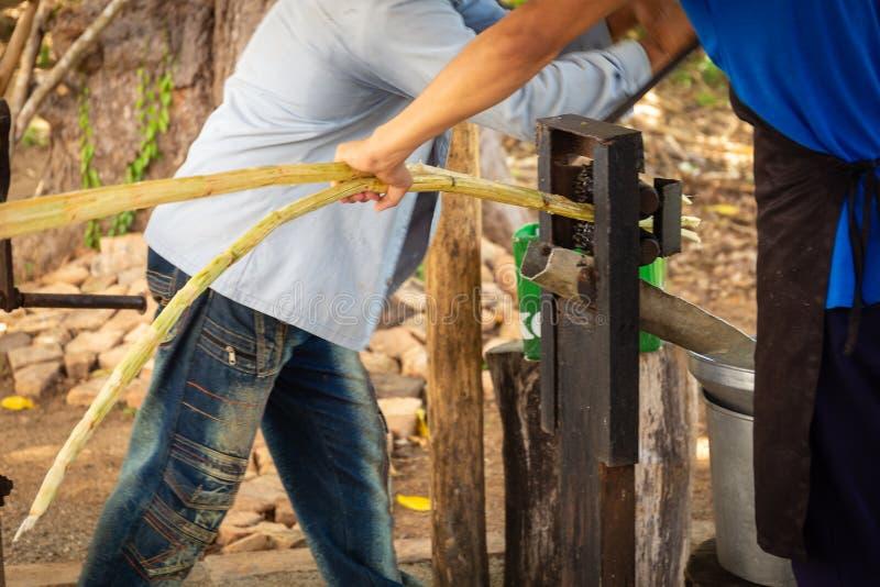 Zwei Arbeitskräfte, die Zuckerrohr zusammendrücken stockfotografie
