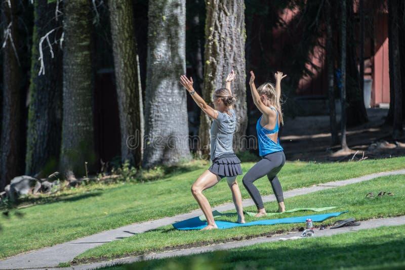 Zwei attraktive Frauen, die Yoga im Park tun stockbilder