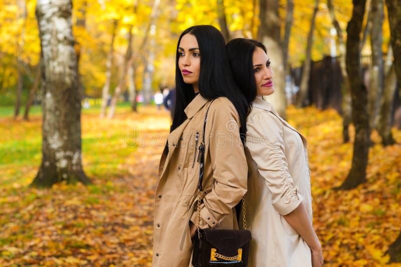 Zwei attraktive Freundinnen im Herbstpark stockfotos
