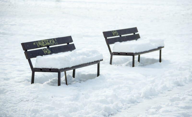 Zwei Bänke im Winter lizenzfreie stockbilder