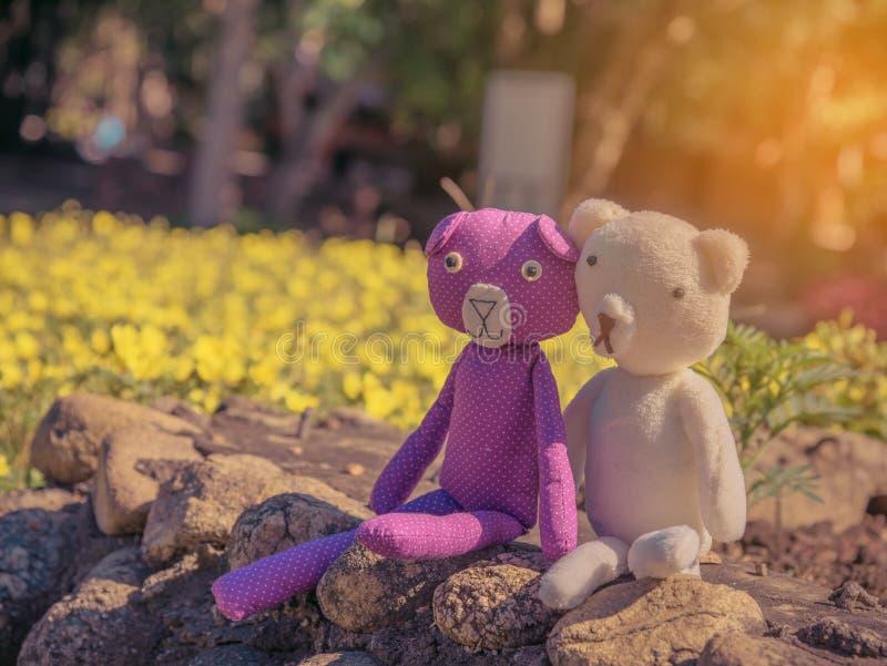 zwei Bärnpuppen sitzen im Garten lizenzfreie stockfotografie