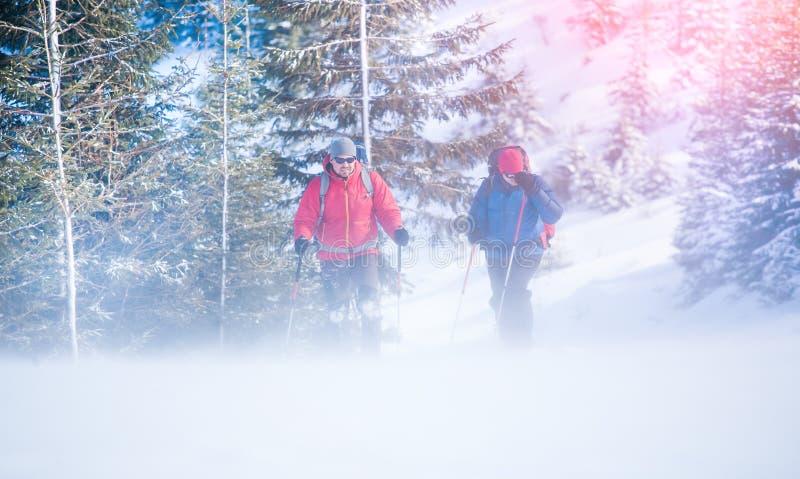 Zwei Bergsteiger während eines Blizzards lizenzfreies stockfoto