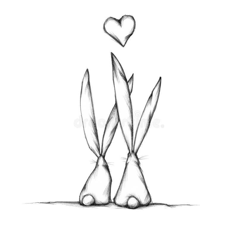 Zwei bezauberte Kaninchen lizenzfreie abbildung