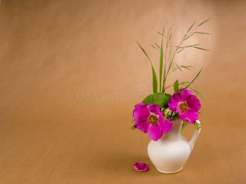 Zwei Blumen und Blätter Hunderose und etwas Wiesengras in wenigem weißem keramischem Krug und in einzigem Dogen stiegen Blumenbla lizenzfreies stockfoto