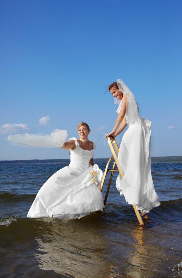 Zwei Bräute auf Stepladder stockbilder