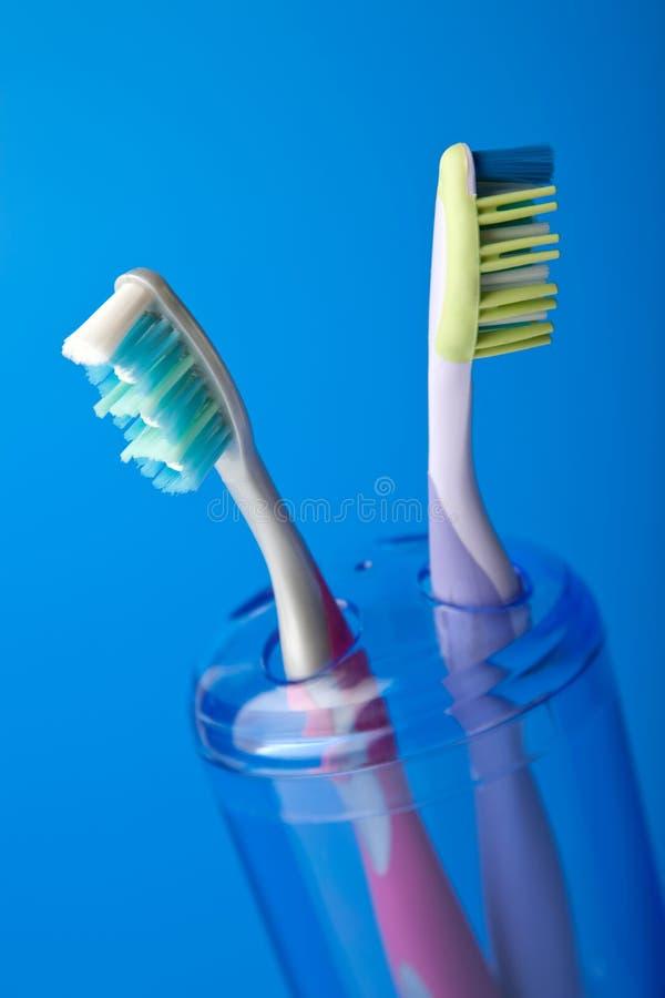 Zwei bunte Zahnbürsten stockbild