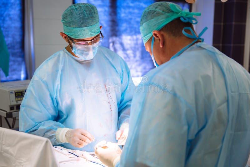 Zwei Doktoren in der sterilen medizinischen Kleidung führen eine Operation in einem Krankenhaus durch Berufsarbeit in der Klinik, lizenzfreies stockfoto