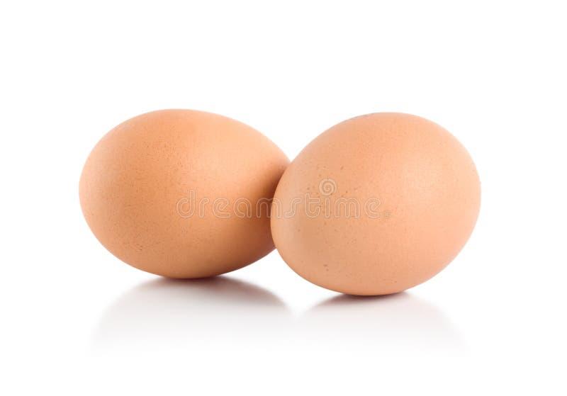 Zwei Eier stockbild