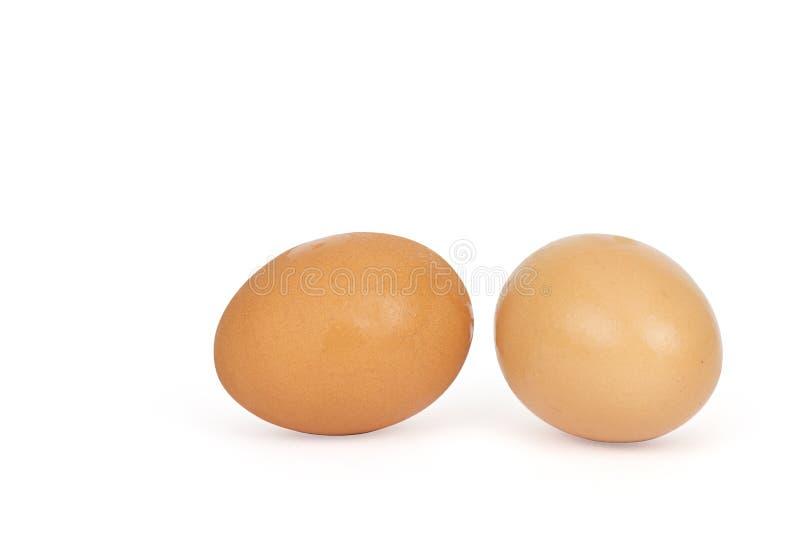 Zwei Eier auf einem wei?en Hintergrund stockfotos