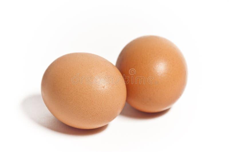 Zwei Eier getrennt lizenzfreie stockfotos