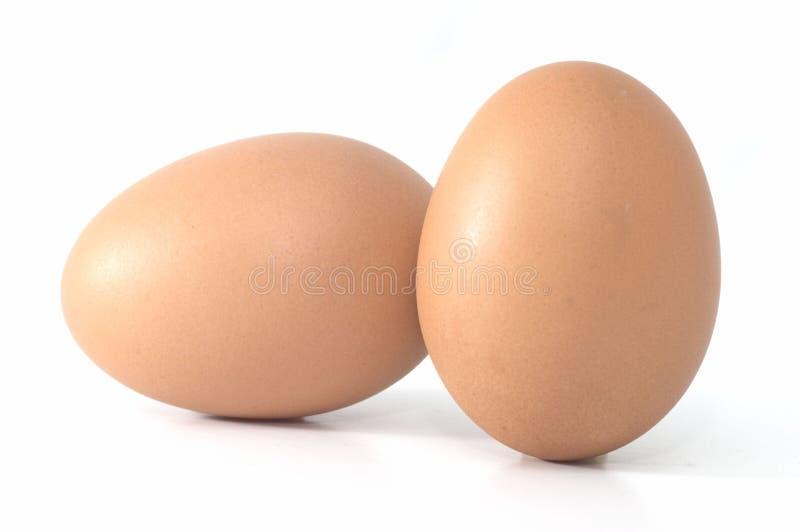 Zwei Eier nebeneinander lizenzfreie stockfotos