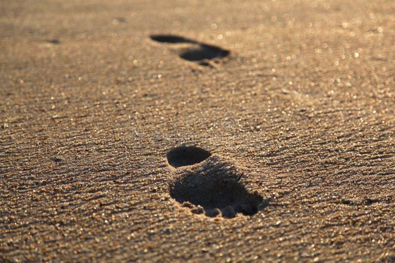 Zwei einsame Abdrücke im perfekten goldenen Sandstrand stockbild