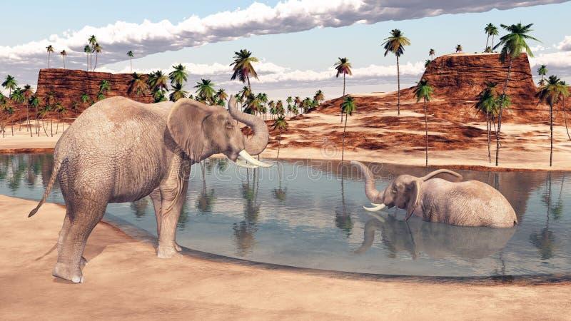 Zwei Elefanten an einem waterhole vektor abbildung