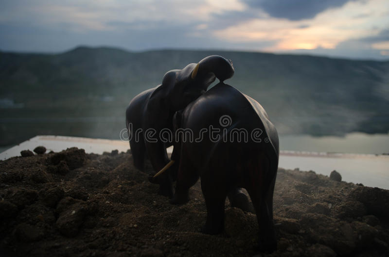 Zwei Elefantstiere wirken aufeinander ein und stehen während Spiel Fighting in Verbindung lizenzfreie stockfotografie