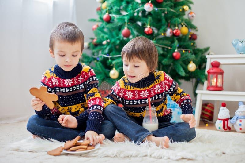 Zwei entzückende Kinder, Jungenbrüder, Plätzchen und das Trinken essend lizenzfreie stockfotografie
