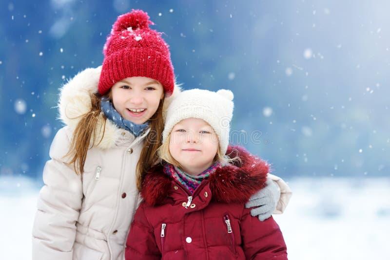 Zwei entzückende kleine Mädchen, die Spaß zusammen im schönen Winterpark haben Schöne Schwestern, die in einem Schnee spielen stockfotos