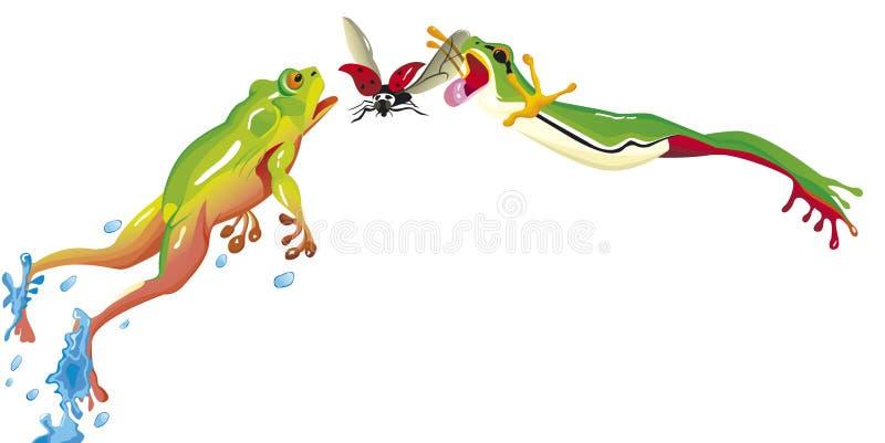 Zwei Frösche springen, um Marienkäfer zu fangen lizenzfreie abbildung
