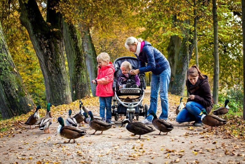 Zwei Frauen und zwei blonde Mädchen, die Enten einziehen lizenzfreie stockfotos