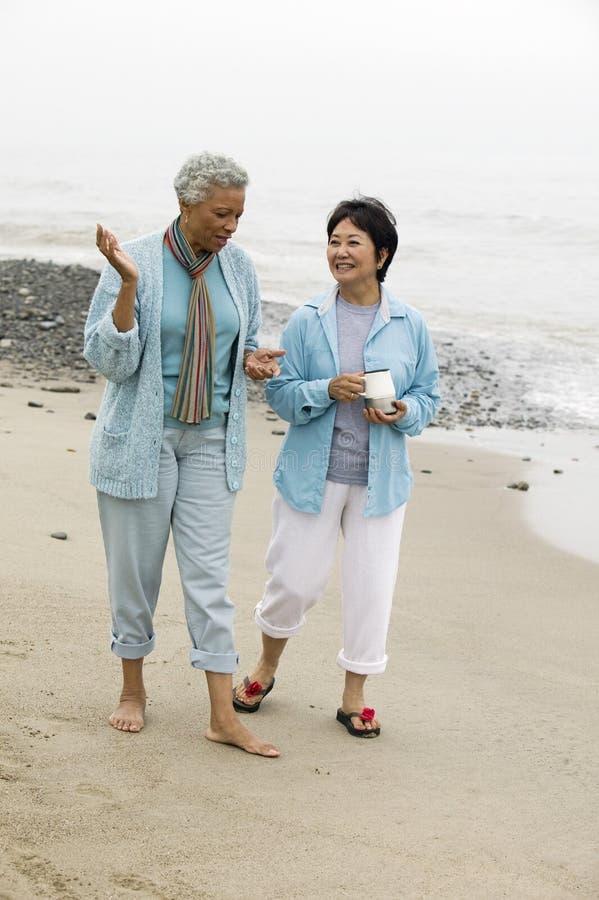 Zwei Frauen von mittlerem Alter, die auf Strand sprechen stockbild