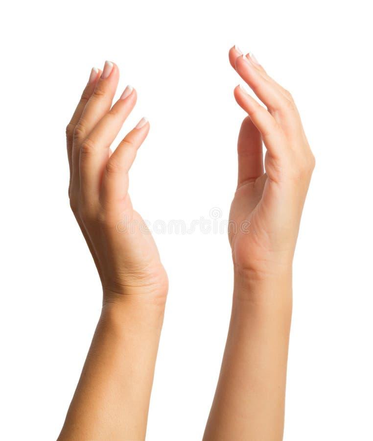 Zwei Frauenhände stockbilder